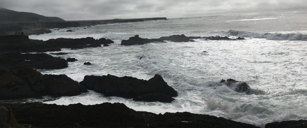NZ_W_Ocean_rocks_dark