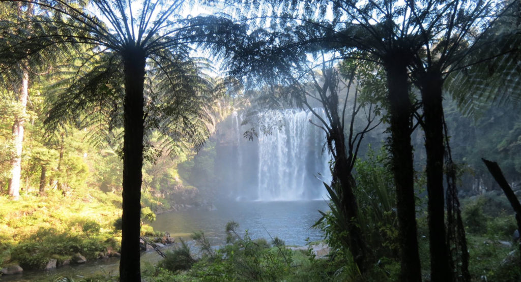 NZ_W_waterfall_2400